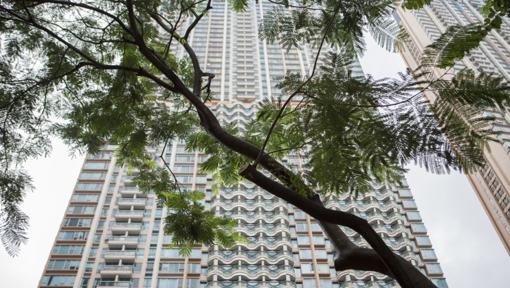p CHN 1808 HongKong ClimChange WideEdit IMG 129